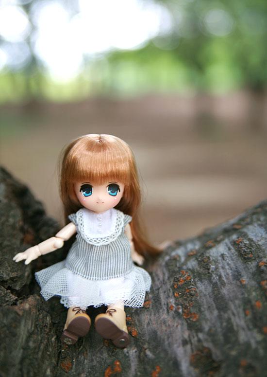 桜の木にオビツ