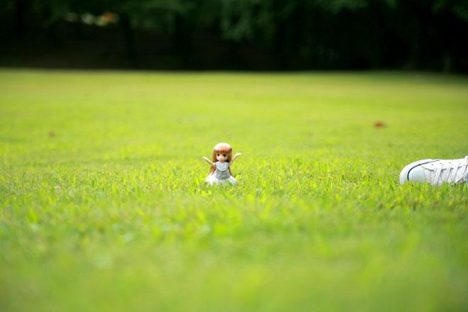 芝生の丘のオビツ