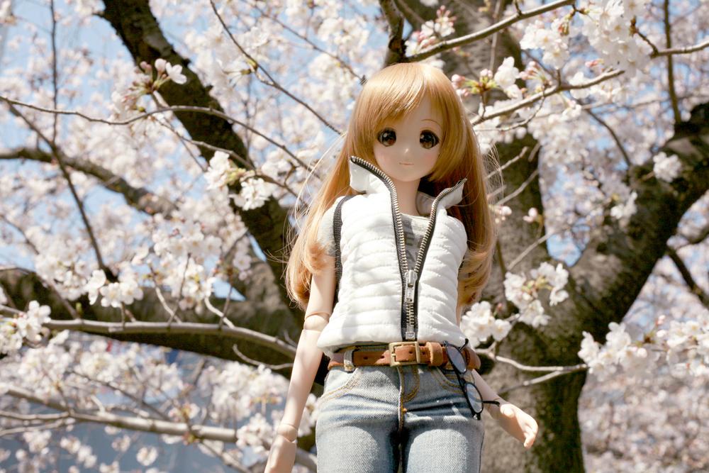 みらいちゃん&桜