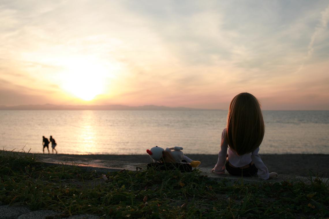 佐渡ヶ島に沈む夕日を見にきたみらいちゃんとトリ